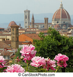 flowering pink peony with spectacular view of cathedral of...