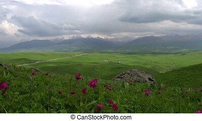 Flowering Spring Foothills. Time La