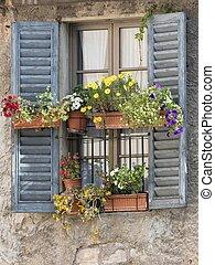 flowering windows of old house