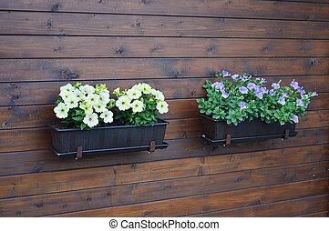 flowerpot on the wood wall