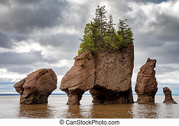 Flowerpot rocks of Hopewell, New Brunswick - The flowerpot...