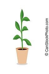Flowerpot Vector Illustration in Flat Design