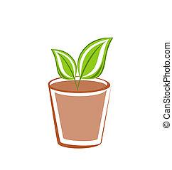 Flowerpot with green leafs plants - Illustration flowerpot...