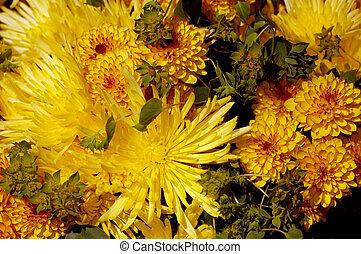 Flowers 64
