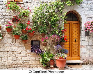 Flowers along medieval stone wall