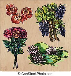 Flowers - An hand drawn colored vector pack. Line art.