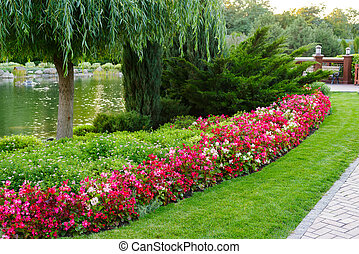 flowers and bushes in a landscape park