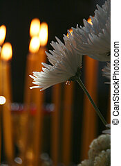 Flowers and candles burning with a black background