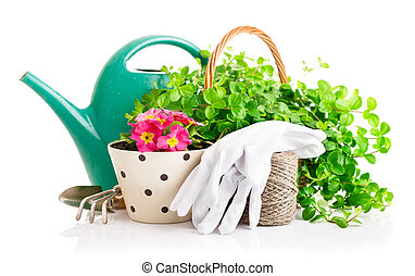 flowers and green plants for gardening with garden tools...