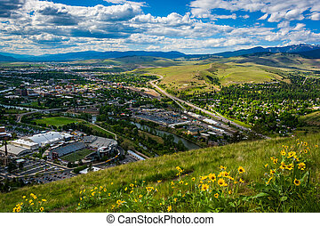 Flowers and view of Missoula from Mount Sentinel, in...