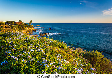Flowers and view of the Pacific Ocean from cliffs in Corona...