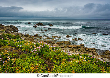 Flowers and view of the rocky Pacific Coast, seen from the 17 Mile Drive, in Pebble Beach, California.