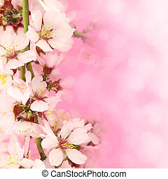 Flowers blooming on pink background