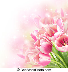 Flowers blooming tulips on a blurred background