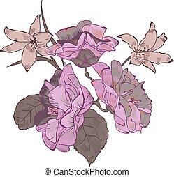 Flowers  bouquet vector illustration