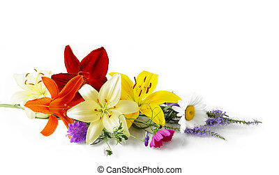 Bunch of fresh colorful flower isolated on white