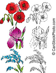 Collection of flowers on a white background. Vector art-illustration.