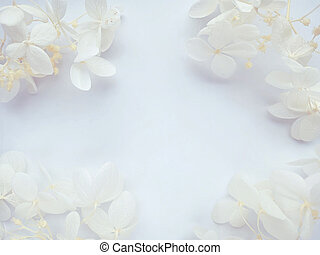 Flowers composition. Frame made of white flowers hydrangea on white background. Valentines day, mothers day, womens day concept. Flat lay, top view.