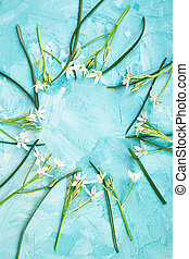 Frame made of white flowers on blue background.