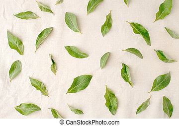 Flowers composition. Pattern made of green leaves on white tissue background. Flat lay, top view.