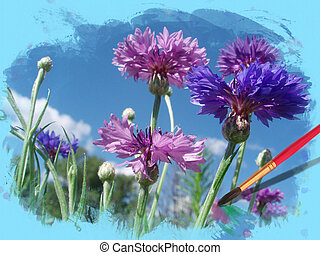 Flowers cornflowers in a water colour frame
