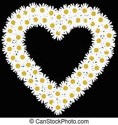 Flowers daisy shape heart