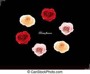 Flowers design, illustration