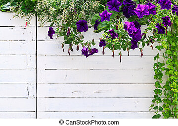 Flowers frame on white planks of old rustic flower pot. Left a lot of copy space for your project.