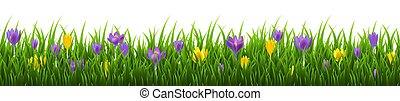 Flowers Frame With Grass