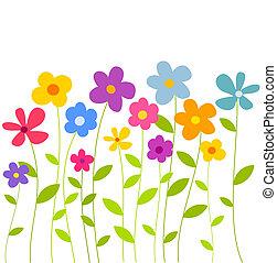 Flowers growing - Colorful flowers growing on meadow. Vector...