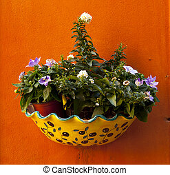 flowers hanging on a rustic wall