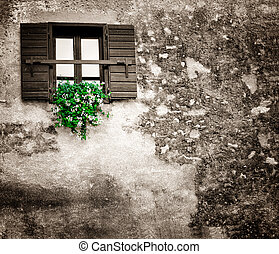 flowers hangs on the old window with a shutter