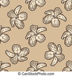 Flowers hibiscus, bouquet seamless. Scratch board imitation. Pattern, beige color background. Engraving vector illustration