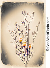 Flowers illistration - Illistration on white background of a...