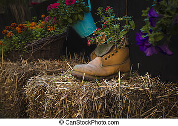 flowers in a boot on the street