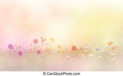 Flowers in a meadow