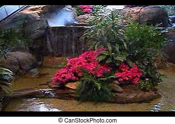 Flowers in a pool