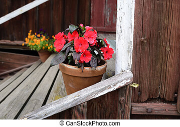 flowers in a pot on the porch of a wooden house, Finland