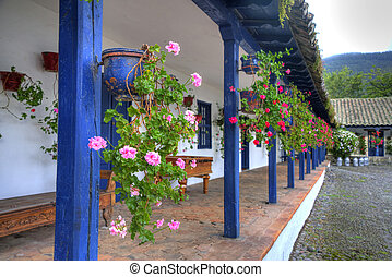 Flowers in an old hacienda - Flowers in pots, lined up and...