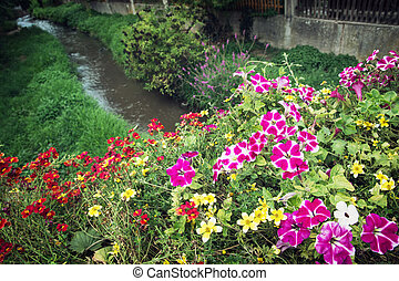 Flowers in bed and creek