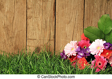 Flowers in front of a fence