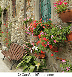 flowers in front of the tuscan house in village Volpaia, ...