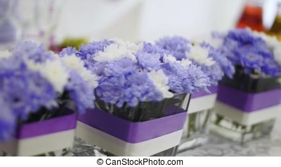 Flowers in glass pots, selective focus. Clip. - Flowers in...