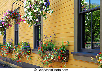 Flowers in hanging basket with yellow historical building.