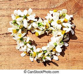 flowers in heart shape on green grass background