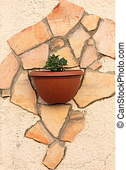 Flowers in pot on a wall