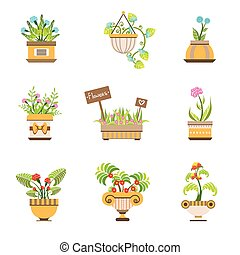 Flowers In Pots Collection