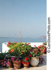 santorini greek islands greece flowers in pots on patio over sea