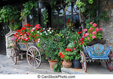Flowers in the carts and planters in the city of Veliko Tarnovo in Bulgaria
