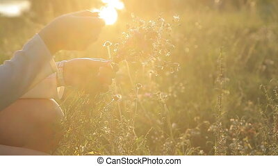 Flowers in the hands of a girl at sunset